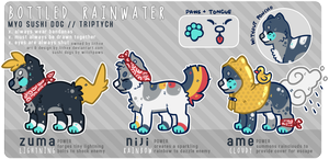 [Sushi Dog] Bottled Rainwater by lithxe