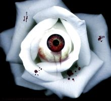 Eye Of Love by Blooded-Bodacea