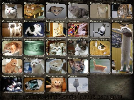 A-Z Of Caturday by PlanetBloopy