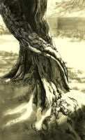 olivetreetrunk by FionaMeng