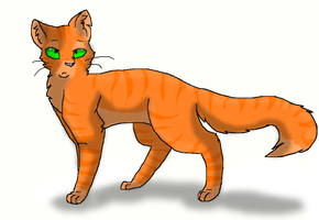 Firestar by xXInsaneKittyCatXx