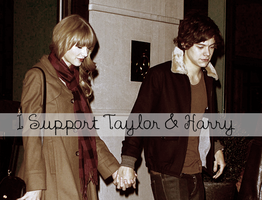 I Support Taylor and Harry by iluvlouis
