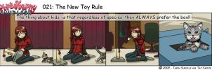 SW: The New Toy Rule by tazsaints