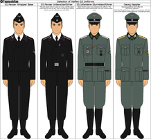 Selection of Waffen-SS Uniforms by Tounushifan