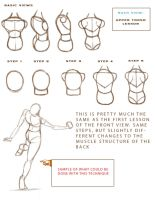 Anatomy Study Guide: Part 2 by SketchProof