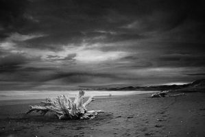 Raglan Beach I by LePianiste