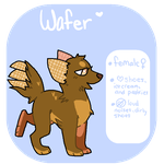 Selling Wafer {Closed} by Flovvers