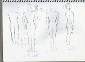 Body structure practice 5 by sophiaan0