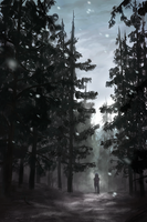 In the Pines by danielledemartini