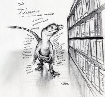 Thesaurus by RobtheDoodler