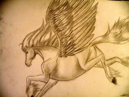 Pegasus by rachelegranger