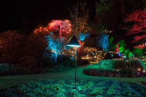 Butchart Gardens Christmas lights by zikrostag