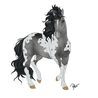 Dapple Grey Tabiano For GalvatronG1 by Wild-Animal-Reserve