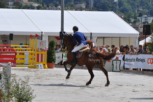 Show Jumping Stock 017 by Champi-Stock