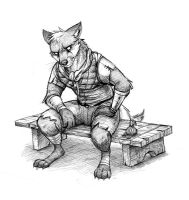 Fox on a Bench by Temiree