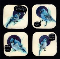 Bluebirds saying strange things by manfishinc