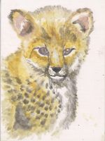 Baby Cheetah by ArcticIceWolf