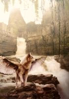 Photomani-first try by cottondragon