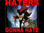Haters Gonna Hate - Shadow by animorphs5678