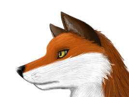 Quick fox paint by RiceGnat