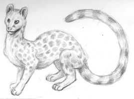 Genet HMNH by ksheridan