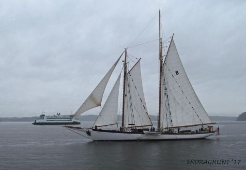 Vessels in Passing by exdraghunt