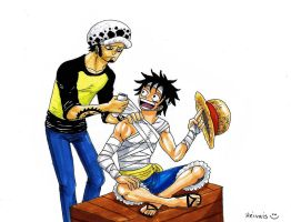 Law and Luffy by heivais