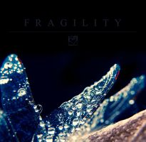 Fragility I by HeartDriven