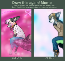 Meme:Before And After by Rinthefox
