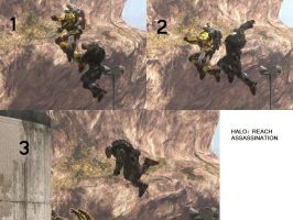 Halo: Air-To-Air Assassination by xXxSp4rtyxXx