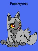 Poochyena by Catherinex13