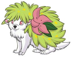 ...pogheys... Shaymin by Rainbow-Cemetery