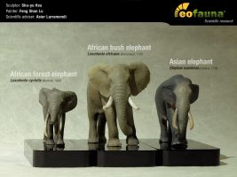 Great extant elephant sculptures by EoFauna