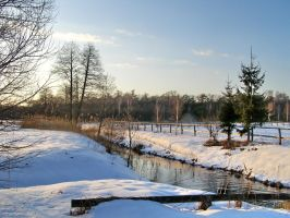 snow, river and forest by mamut077
