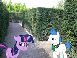 Confessing their Love in a Maze by Bronyman1995
