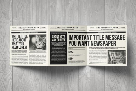 Newspaper Brochure Trifold by luuqas