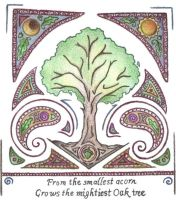Oak Wisdom by Spiralpathdesigns