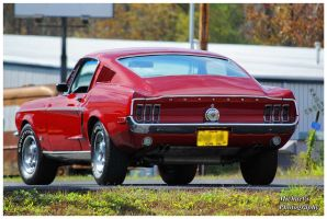 A 1968 Mustang by TheMan268