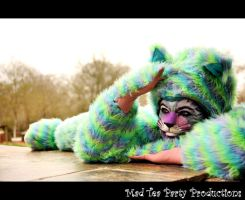 The Cheshire Cat by Mad-Tea-Party-Prodn