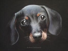 Pastel  Sweet Cute Little Black Dog by PASTELIZATOR