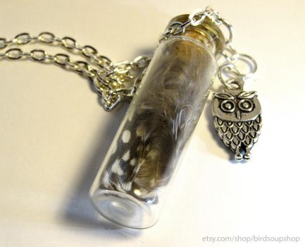 Owl Feather Necklace by birdsoup