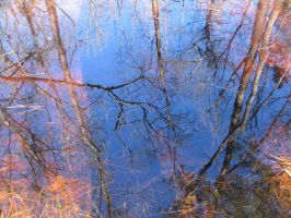 Reflection Down Below by dproberts