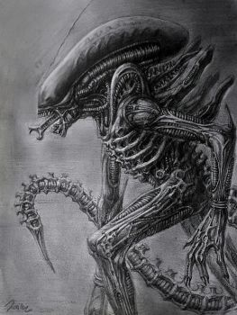 xenomorph by the6829