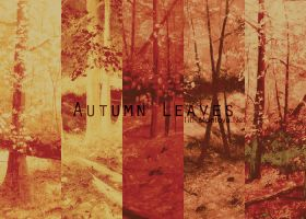Autumn Leaves by Un-Real