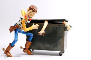 Woody the Problem Solver by theonecam