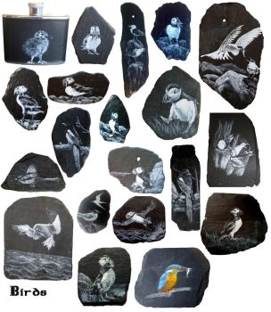BnW Birds (actually one is coloured) by Armel