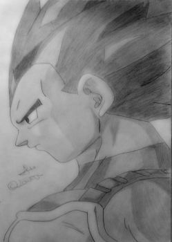 The Prince of Saiyans by SonGohan10