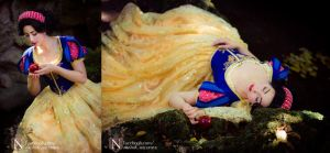 Snowwhite and her Destiny - Disney by Naraku-Sippschaft