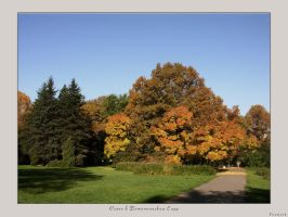 Autumn in Botanical garden by firework