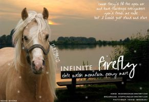 Infinite Firefly by FallenShandeh